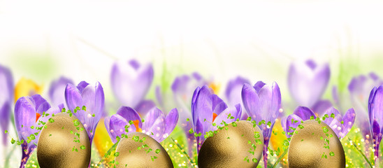 Spring flowers with gold eggs. Easter background