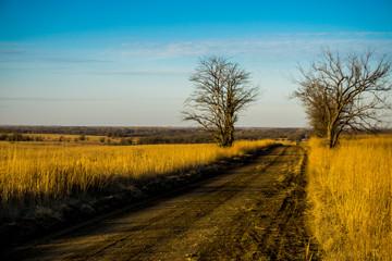 dirt flint hills road in autumn