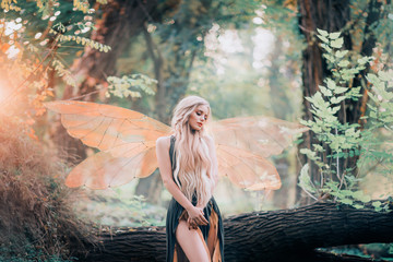 real fairy from magical stories, goddess of nature with transparent wings alone in dense forest, beauty closes her eyes, listens to birds singing, charming lady in the sunlight and with bare legs Fototapete