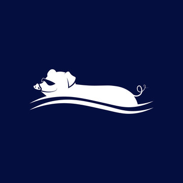 Bahamas Swimming Pig. Vector illustration.