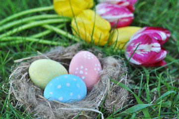 Spoed Fotobehang Tulp painted Easter eggs in a nest on green grass and a bouquet of tulips, an Easter card, a festive concept