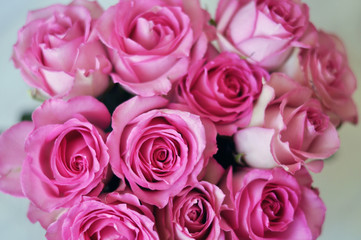 Bouquet of pink roses close-up