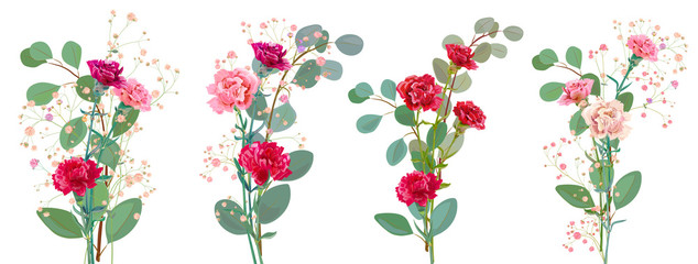 Bouquet of carnation schabaud, pink, red flowers, twigs gypsophile, eucalyptus populus, white background, card for Mother's Day, Victory day. Digital draw, illustration in watercolor style, vector