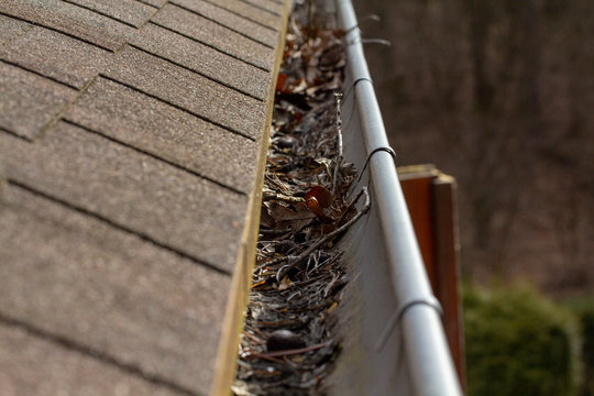 Leaves and branches in the gutters. The need to clean gutters from the debris that the water could flow through. Dirt in the gutters.