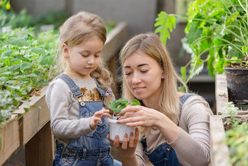 A young woman with a small daughter is planting a plant in a pot.