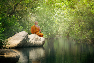 Buddha monk practice meditation in forest Wall mural