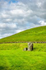 green grass meadow background in Ireland