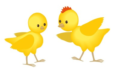 Easter fluffy chickens