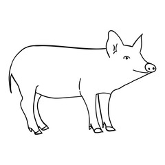 Contour pig in doodle style.