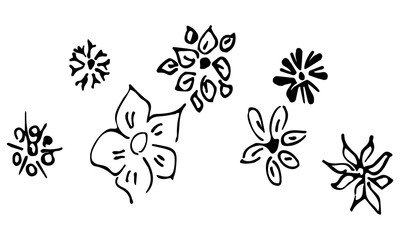 Engraved Vector Hand Drawn Illustrations Set Of Seven Abstract Flowers Isolated on White. Hand Drawn Sketch of a Flower