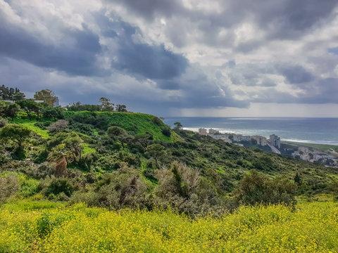 Mount Carmel in Haifa, Stella Maris. Travel to Israel in winter.