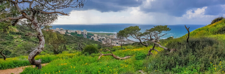 Poster Khaki Mount Carmel in Haifa, Stella Maris - Panoramic shot. Travel to Israel in winter.