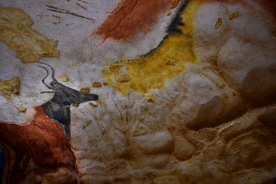 Vaches ou boeufs peints sur les parois de la grotte de Lascaux ( Dordogne )