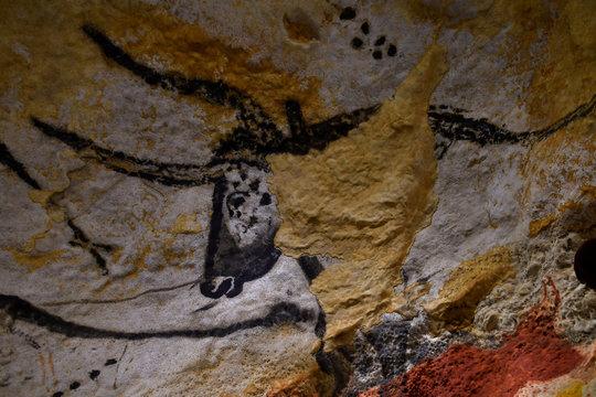 Tête de vache sauvage dans la grotte de Lascaux (France )