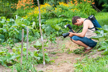 Young man photographer in garden taking picture photo of plants in green summer in Ukraine Russia dacha or farm with cucumber vegetable tomato orchard