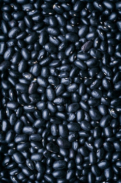 Close up of black beans