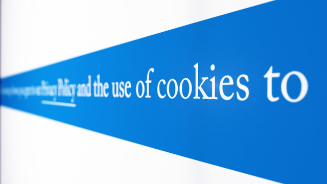 Simulated computer screen with text description about Cookies and Privacy Policy