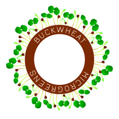 Microgreens Buckwheat. Seed packaging design, round element in the center. Around him sprouts