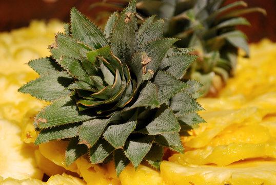 Cutted pineapple with leaves