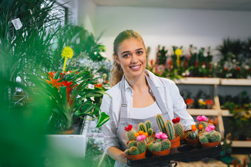 woman holding decorative cactus in flower shop