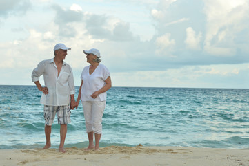 Portrait of elderly couple standing on tropical beach
