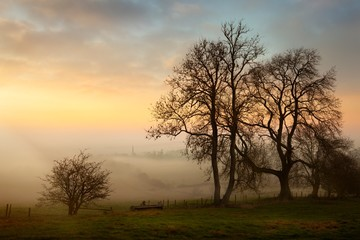 Misty sunset at Mickleton, Cotswolds, Chipping Campden, Gloucestershire, England