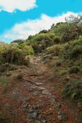 Smigies Nature Trail, circular walk, Akamas Peninsula National Park - Cyprus