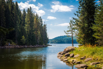 Beautiful lake and forest scenery. Summer day in the nature. Bulgaria