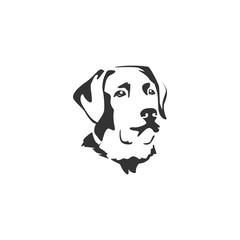 dog face illustration designs