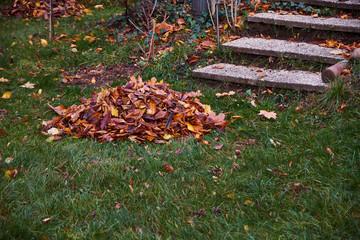 Laub im Garten, Herbst, Gartenarbeit, Laubhaufen, bunte Blätter, Jahreszeiten