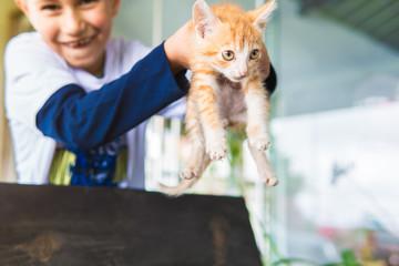 gato e criança