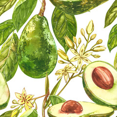 Avocado watercolor hand draw illustration isolated on white background. Seamless pattern of hand drawn avocado.