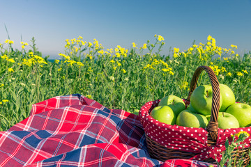 picnic background with basket and blanket outdoors