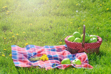 picnic basket with apples and blanket outdoor in park