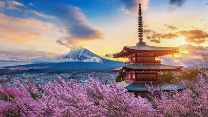 Wall Mural - Beautiful landmark of Fuji mountain and Chureito Pagoda with cherry blossoms at sunset, Japan. Spring in Japan.