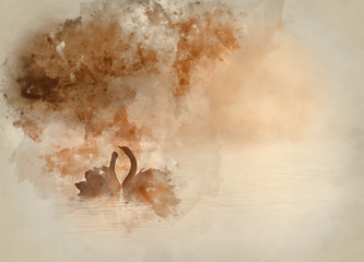 Watercolour painting of Mated pair of swans on misy foggy ASutumn Fall lake touching scene