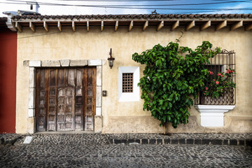 Traditional collonial house with tree, Antigua, Guatemala