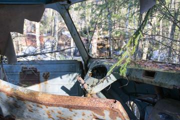 Verlassenes Autowrack im Wald