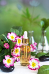 Organic cosmetics, natural oil, handmade with herbal and primrose flower extracts in glass bottles