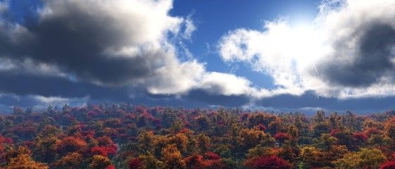 Storm clouds over the autumn park, autumn sky over the forest, panorama of the autumn landscape