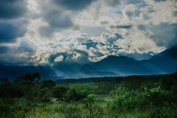Llanero Landscapes