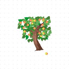 Apple tree isolated illustration
