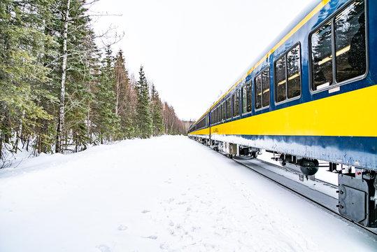 The Alaska Railroad Train