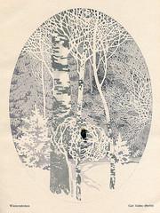 Bird in a Winter Wood
