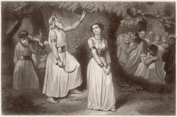 Druids Gathering the Sacred Mistletoe