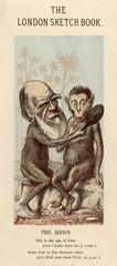Charles Darwin with a Lookalike Ape