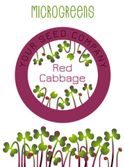 Microgreens Red Cabbage. Seed packaging design, round element in the center. Sprouting seeds of a plant