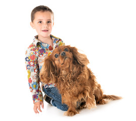 cavalier king charles  and child