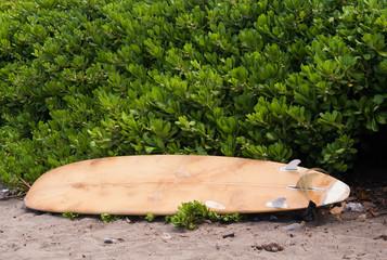 Surfboard laying on beach