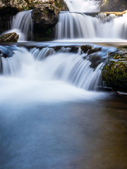 Pretty scene with waterfalls in the bush
